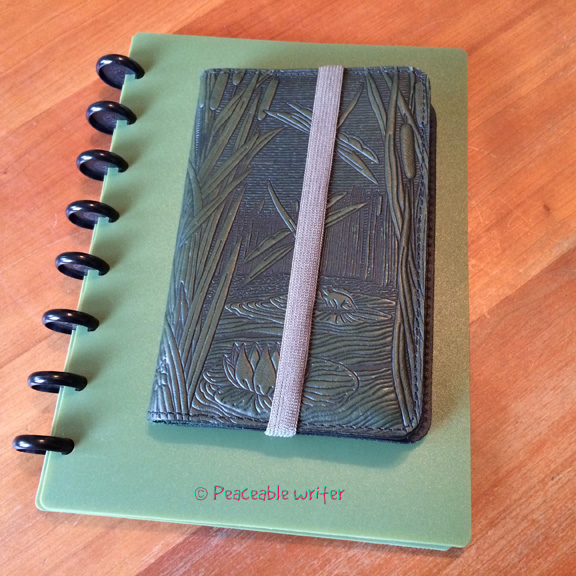 Junior Arc and Oberon pocket cover - got a green thing goin', ay?